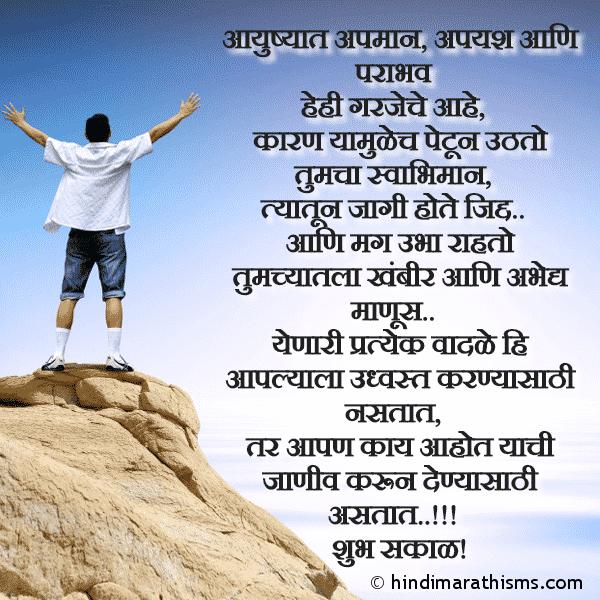 Apyash Ani Parabhav Garjecha Ahe